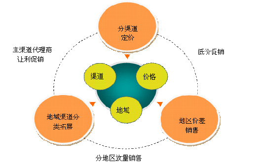 安体舒通项目可行性研究报告-促销策略