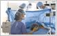 制药医疗-项目申请报告