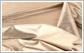 纺织轻工-项目调研报告